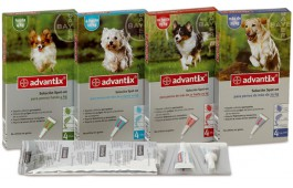 Advantix Cão
