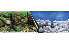 Foto Fundo para Aquário Plantas + Pedras